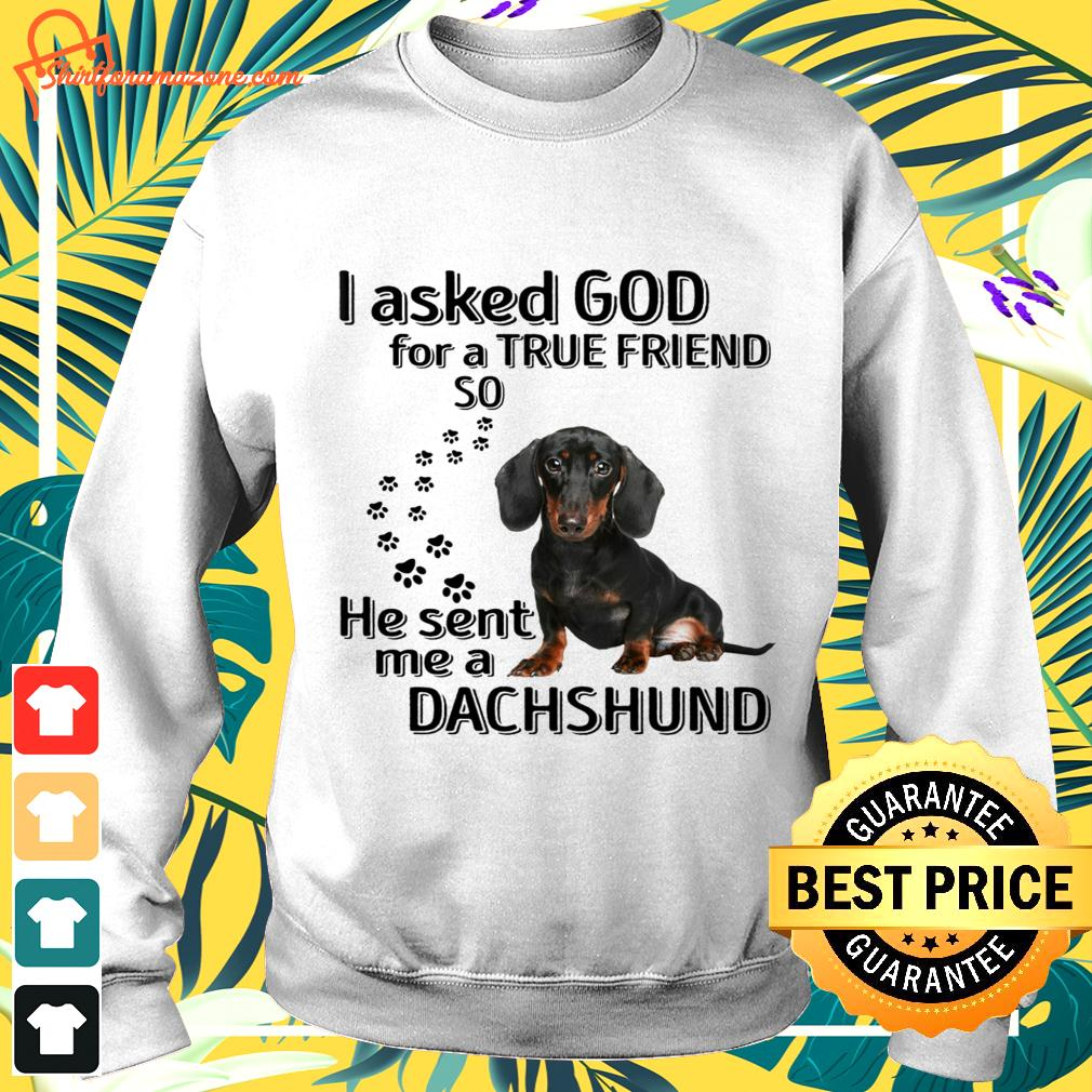I asked god for a true friend so he sent me a Dachshund sweater
